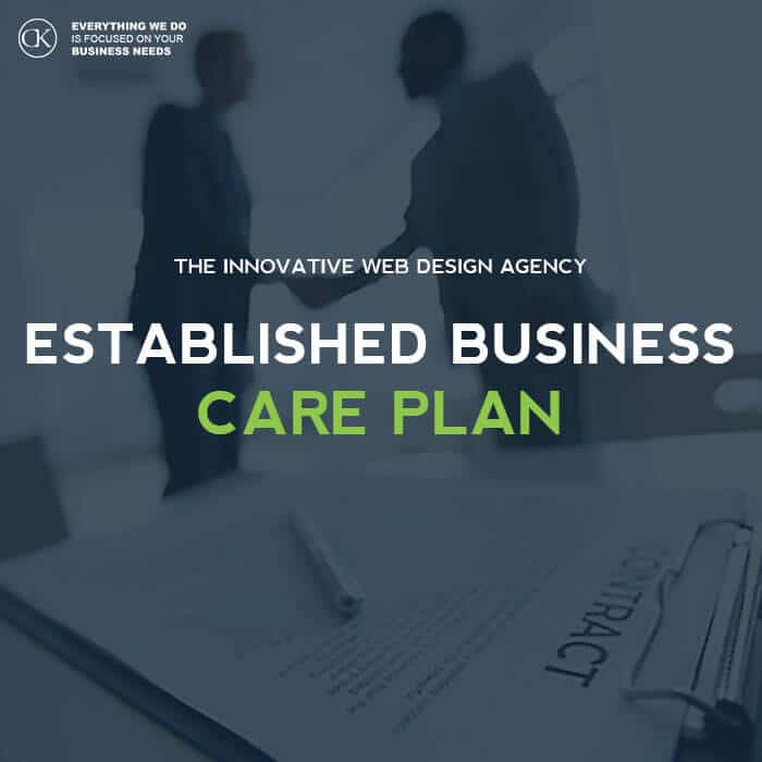 Website Care Plan for - Established Business