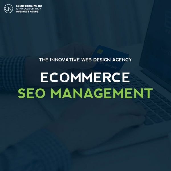 ecommetce - seo management plan