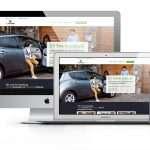 website design Dublin of evpowerireland